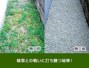 ダスキン 高畑トータルグリーンで、害虫対策、芝生のお手入れ、お庭管理 名古屋市全域対応